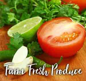 Fresh Produce x EN